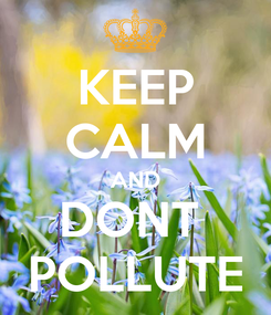 Poster: KEEP CALM AND DONT  POLLUTE