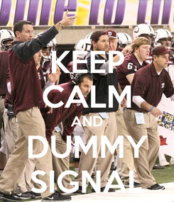 Poster: KEEP CALM AND DUMMY SIGNAL