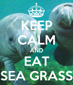 Poster: KEEP CALM AND EAT SEA GRASS
