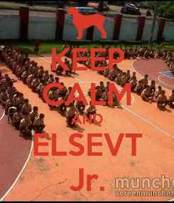 Poster: KEEP CALM AND ELSEVT Jr.