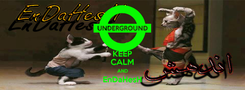 Poster: KEEP CALM AND EnDaHesH