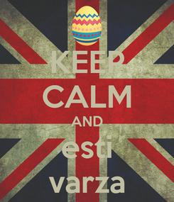Poster: KEEP CALM AND esti varza