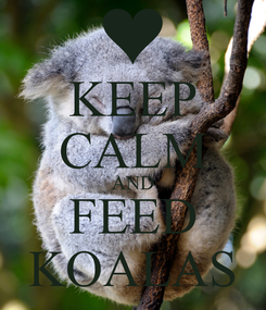 Poster: KEEP CALM AND FEED KOALAS