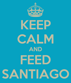 Poster: KEEP CALM AND FEED SANTIAGO