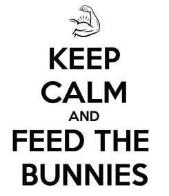 Poster: KEEP CALM AND FEED THE  BUNNIES