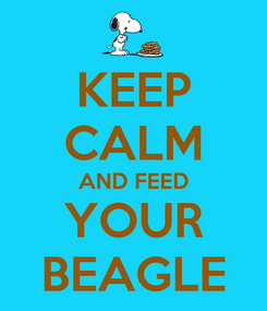 Poster: KEEP CALM AND FEED YOUR BEAGLE