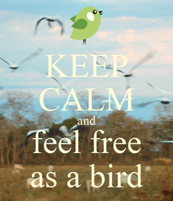 Poster: KEEP CALM and feel free as a bird