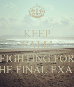 Poster: KEEP CALM AND FIGHTING FOR THE FINAL EXAM