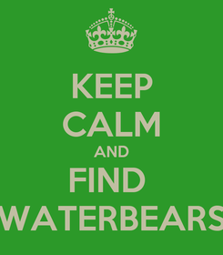 Poster: KEEP CALM AND FIND  WATERBEARS
