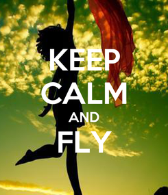 Poster: KEEP CALM AND FLY