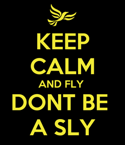 Poster: KEEP CALM AND FLY  DONT BE  A SLY