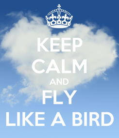 Poster: KEEP CALM AND FLY LIKE A BIRD