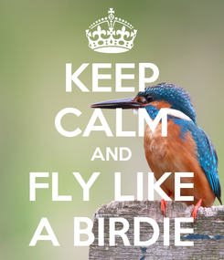 Poster: KEEP CALM AND FLY LIKE A BIRDIE