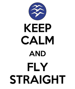 Poster: KEEP CALM AND FLY STRAIGHT