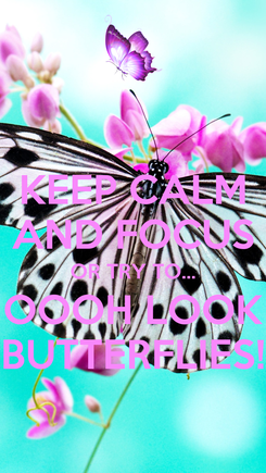 Poster: KEEP CALM AND FOCUS OR TRY TO... OOOH LOOK BUTTERFLIES!