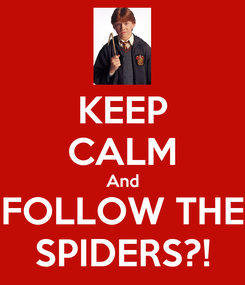 Poster: KEEP CALM And FOLLOW THE SPIDERS?!