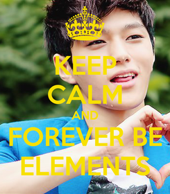 Poster: KEEP CALM AND FOREVER BE ELEMENTS