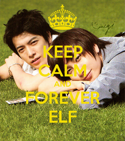 Poster: KEEP CALM AND FOREVER ELF