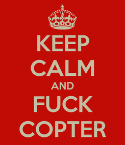 Poster: KEEP CALM AND FUCK COPTER