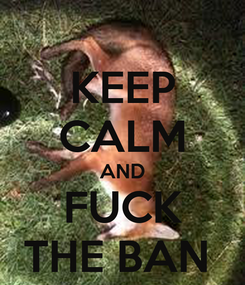 Poster: KEEP CALM AND FUCK THE BAN