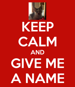 Poster: KEEP CALM AND GIVE ME A NAME