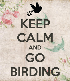 Poster: KEEP CALM AND GO BIRDING