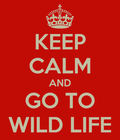 Poster: KEEP CALM AND GO TO WILD LIFE