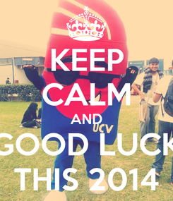Poster: KEEP CALM AND GOOD LUCK THIS 2014