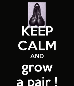 Poster: KEEP CALM AND grow a pair !