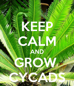 Poster: KEEP CALM AND GROW  CYCADS