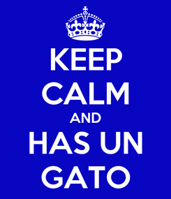 Poster: KEEP CALM AND HAS UN GATO
