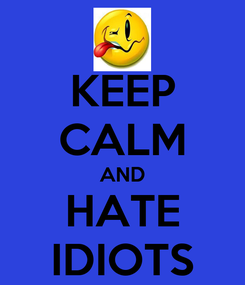 Poster: KEEP CALM AND HATE IDIOTS