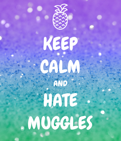Poster: KEEP CALM AND HATE MUGGLES
