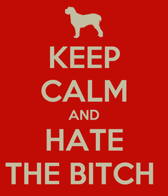 Poster: KEEP CALM AND HATE THE BITCH