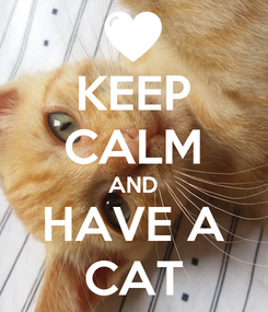 Poster: KEEP CALM AND HAVE A CAT