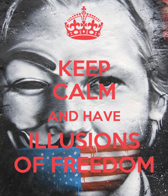 Poster: KEEP CALM AND HAVE ILLUSIONS OF FREEDOM