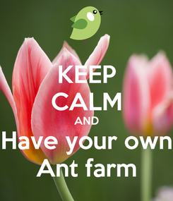 Poster: KEEP CALM AND Have your own Ant farm