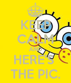 Poster: KEEP CALM AND HERE'S  THE PIC.