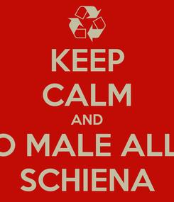 Poster: KEEP CALM AND HO MALE ALLA SCHIENA