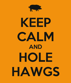 Poster: KEEP CALM AND HOLE HAWGS
