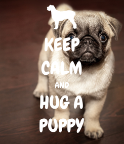 Poster: KEEP CALM AND HUG A PUPPY