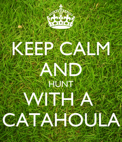 Poster: KEEP CALM AND HUNT WITH A  CATAHOULA