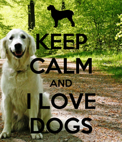 Poster: KEEP CALM AND I LOVE DOGS