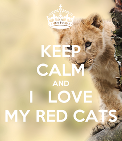 Poster: KEEP CALM AND I   LOVE MY RED CATS