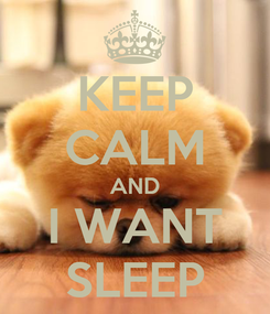 Poster: KEEP CALM AND I WANT SLEEP