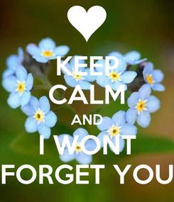 Poster: KEEP CALM AND I WONT FORGET YOU