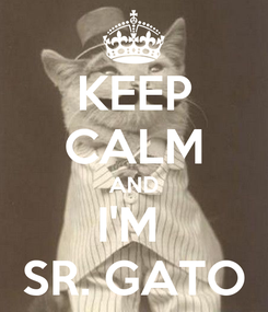 Poster: KEEP CALM AND I'M  SR. GATO