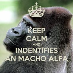 Poster: KEEP CALM AND INDENTIFIES AN MACHO ALFA
