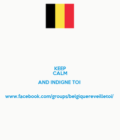 Poster: KEEP CALM AND INDIGNE TOI   www.facebook.com/groups/belgiquereveilletoi/