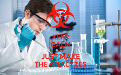 Poster: KEEP CALM and JUST MAKE THE ANALYZES